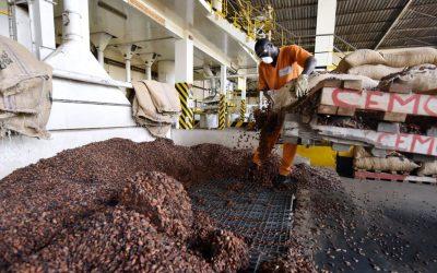 Le chocolatier Cémoi va ouvrir son capital pour changer de taille