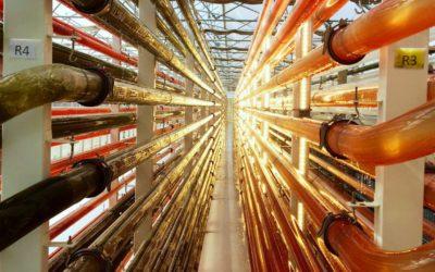 Microalgues : Microphyt va se doter d'une bioraffinerie industrielle